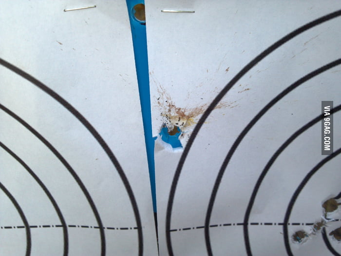 A fly landed on the target while someone was shooting.