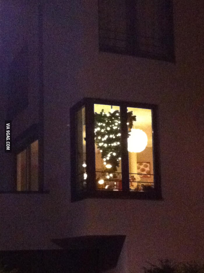 Go home Christmas tree, you are drunk.