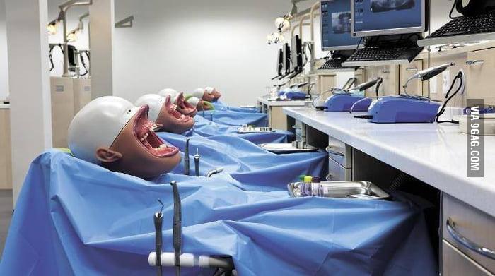 Creepy dental school models.