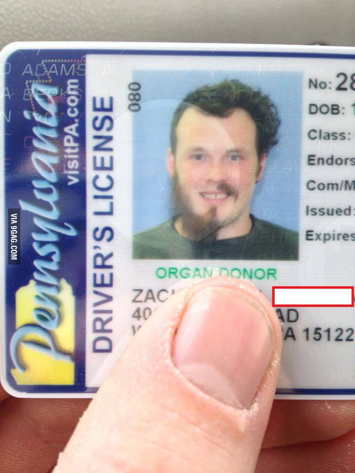 This is a nice Driver's License picture.