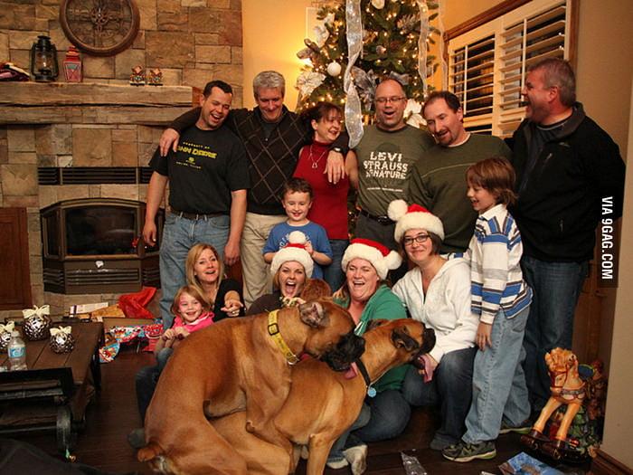 Christmas Photobomb