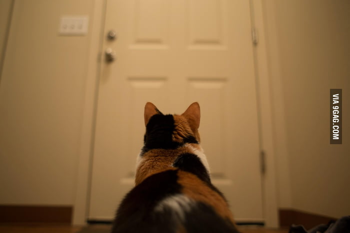 He is waiting for his master to come back.