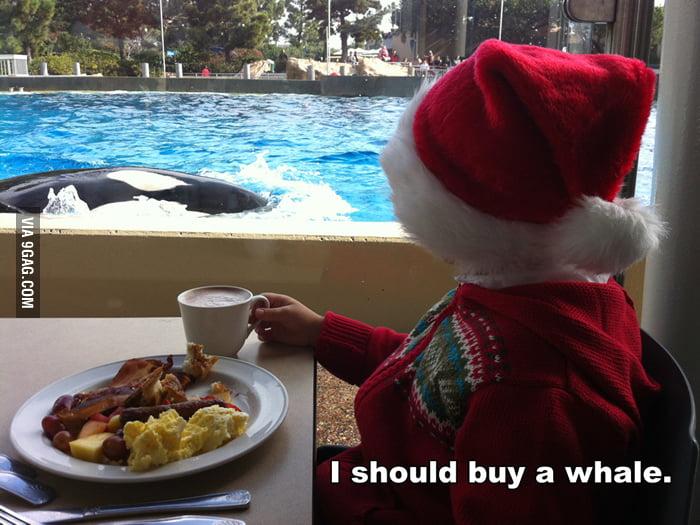 I should buy a whale.