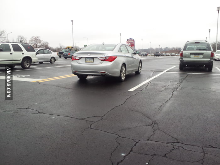 This driver is either a douchebag or moron.