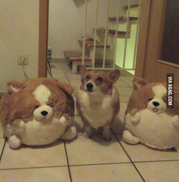 Master of disguise.