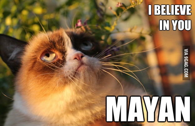 Grumpy Cat is waiting for the day.