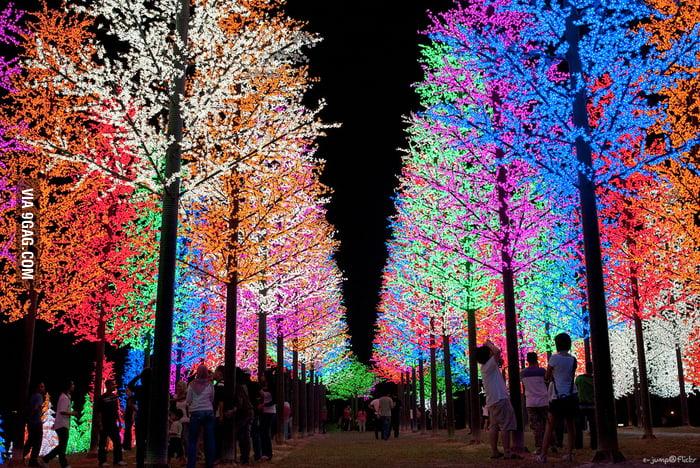 Christmas Lights in Selangor, Malaysia.