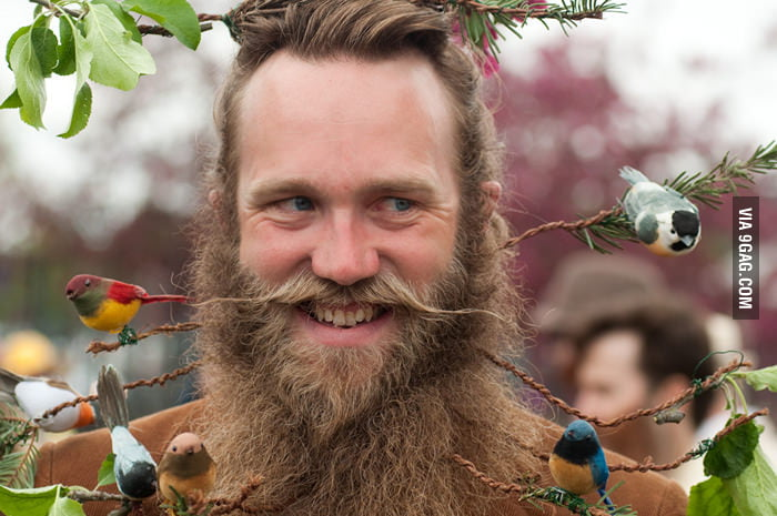 This guy has a beard forest.