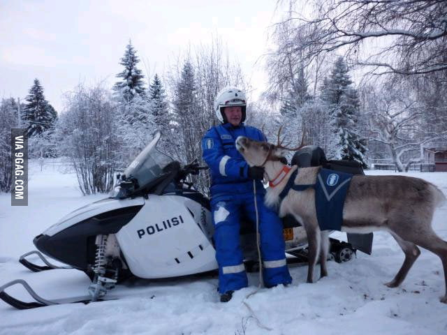 Policeman with his police reindeer in Finland.
