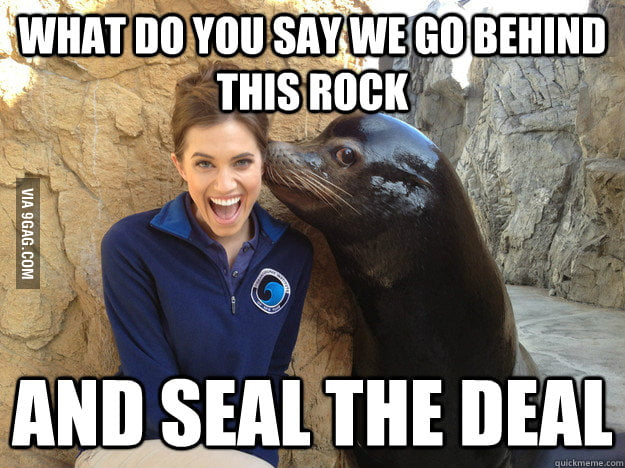 Let's seal the deal.