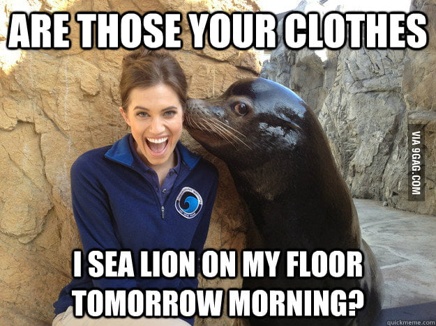 He's not a seal but he closes the deal.