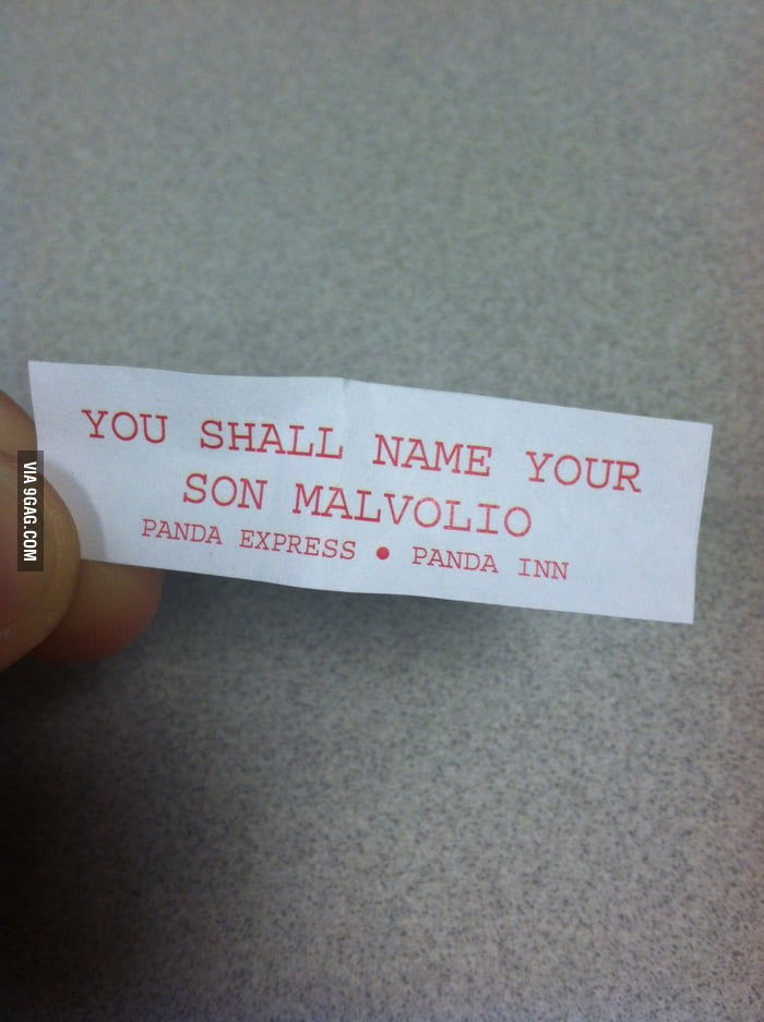 No, I shall not.