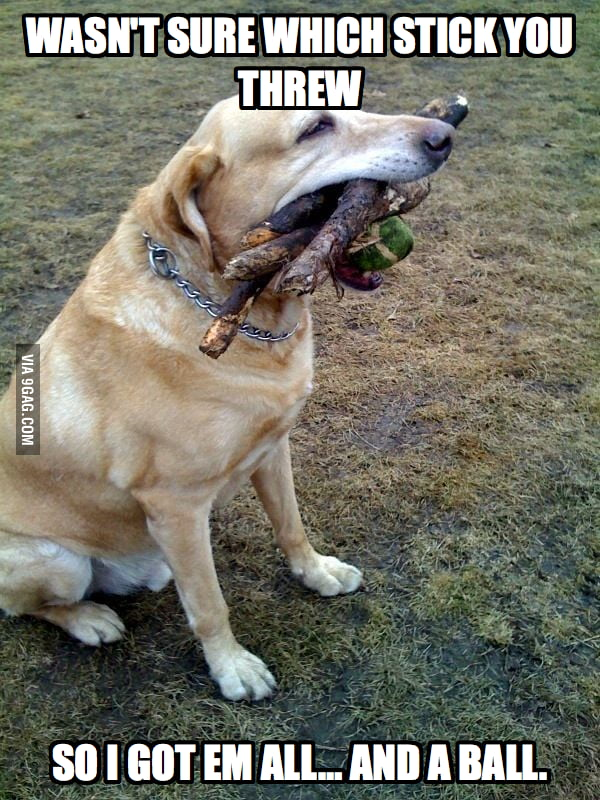 He wasn't sure which stick so he got em all.