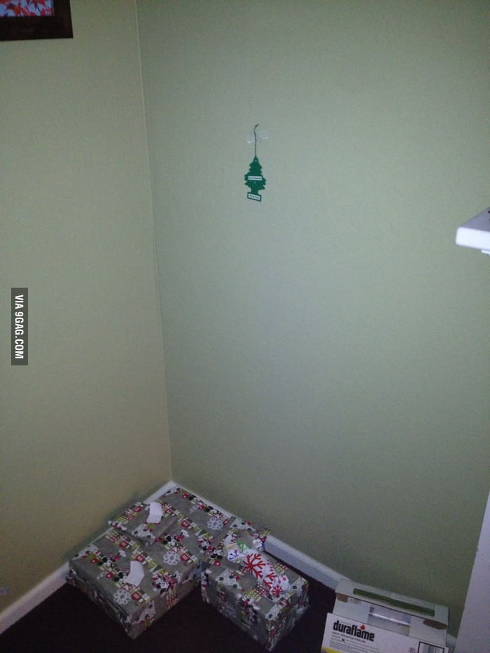 Just put up the Christmas Tree.