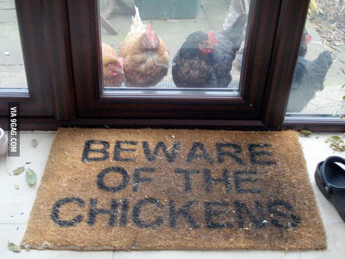Beware of the chickens.