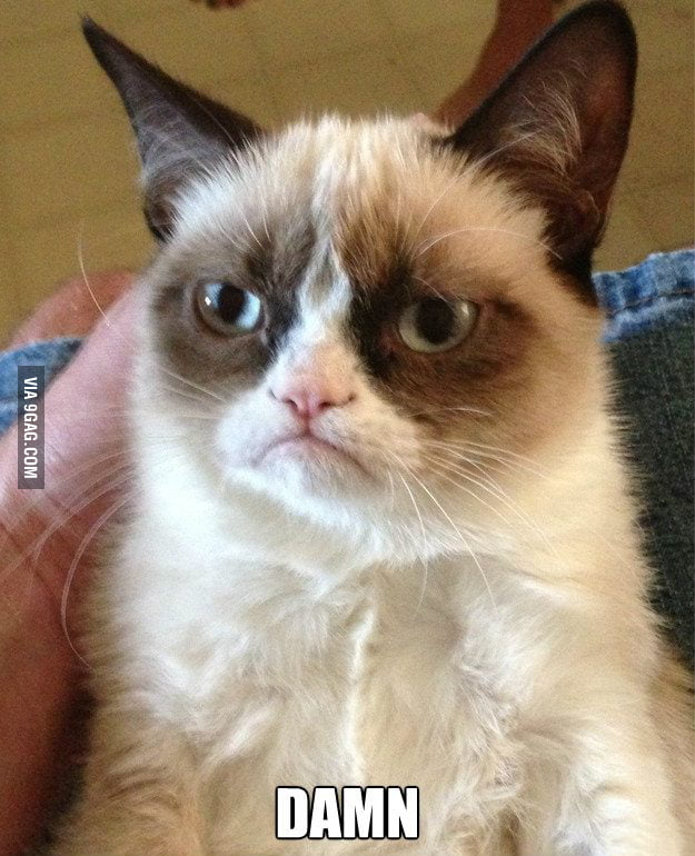 Grumpy Cat at 12:01AM, Dec 21, 2012.