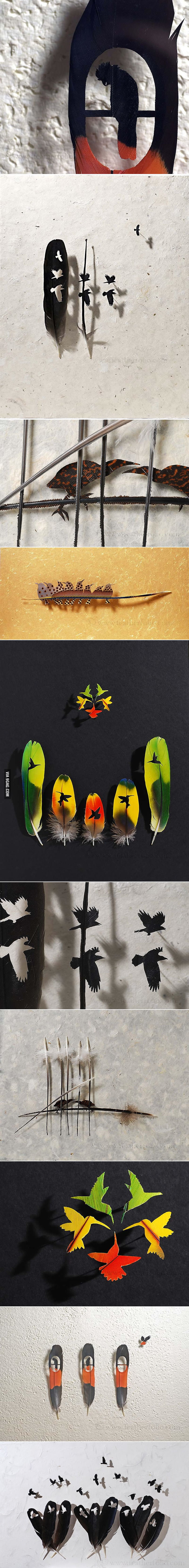 Feather Art.