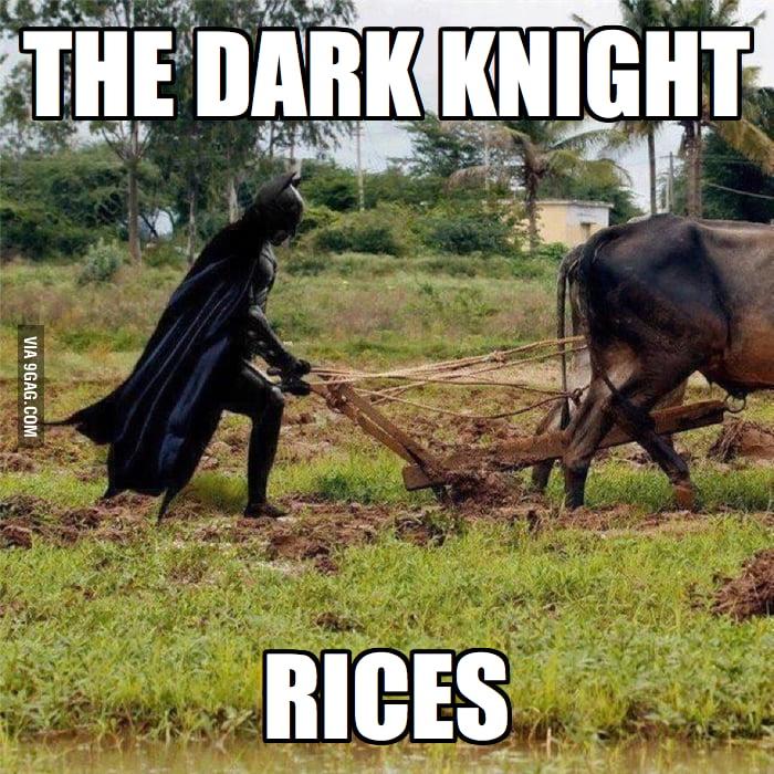 Dark Knight Rices