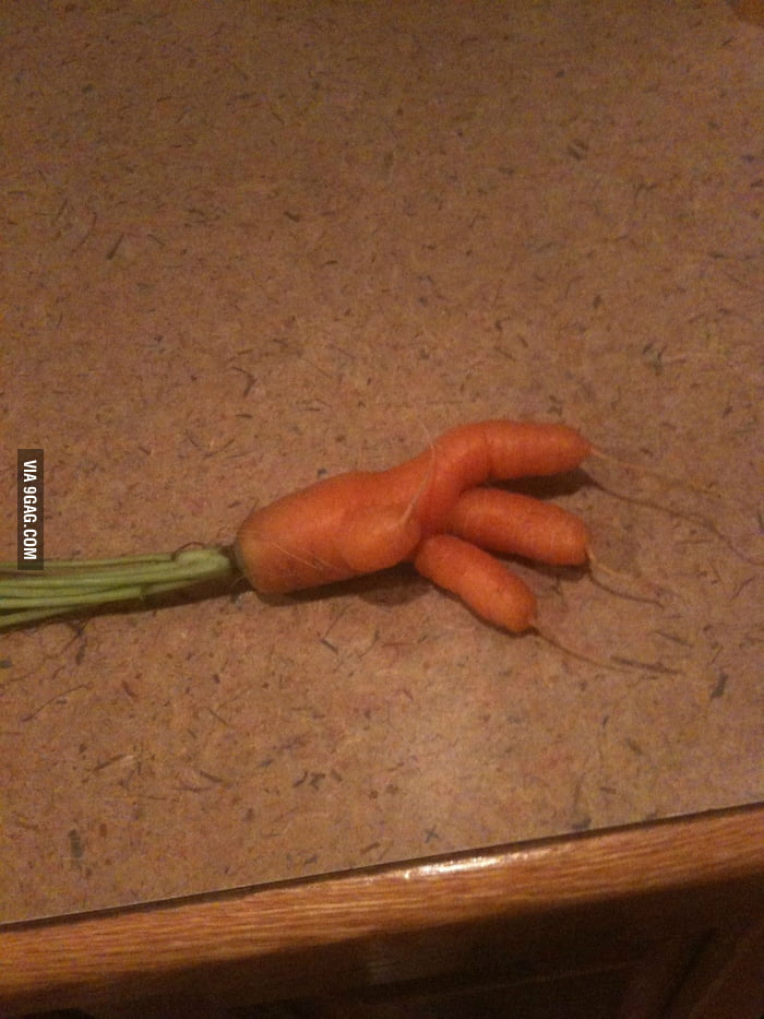 Carrot Hand!