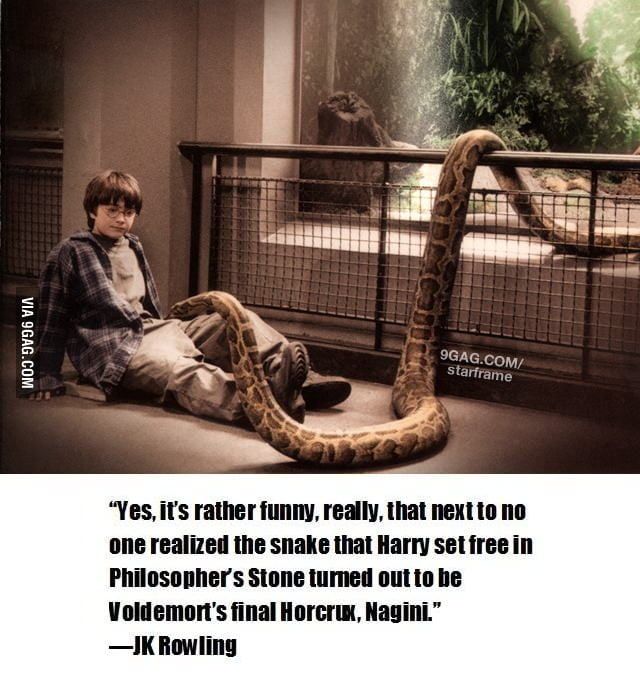 Harry Potter Mind Blown