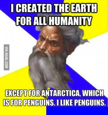 God loves penguins