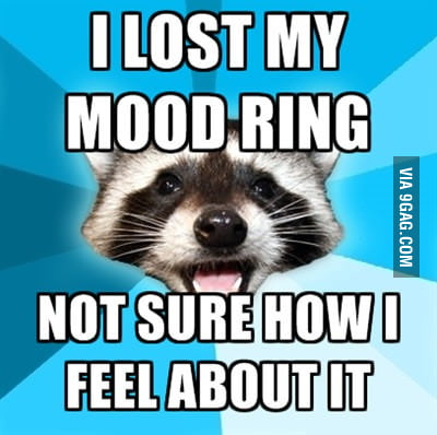 Lame Pun Raccoon lost its mood ring
