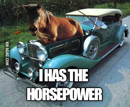 I HAS DA HORSEPOWER!