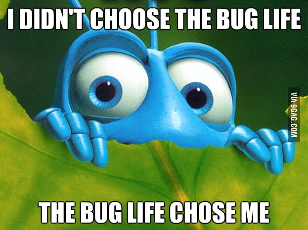 I couldn't help when I was re-watching A Bug's Life.
