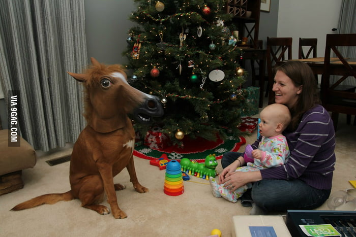 This baby girl got a pony for Christmas.