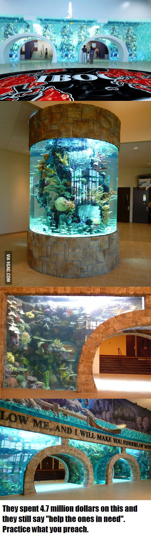 Freshwater aquarium fish dallas - An Evangelical Church In Dallas Bought This Fish Aquarium