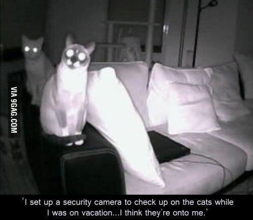 Kind of creepy
