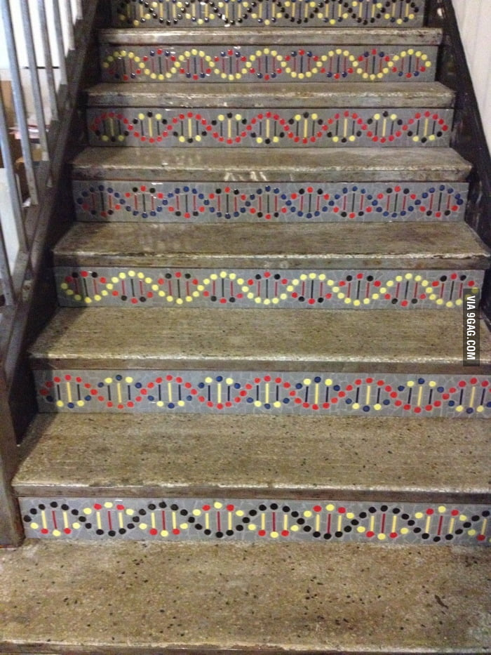 The stairs at a biotech company.