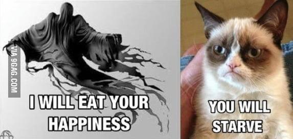 Grumpy Cat has no happiness