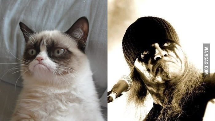 Grumpy Cat looks like the lead singer of Celtic Frost.