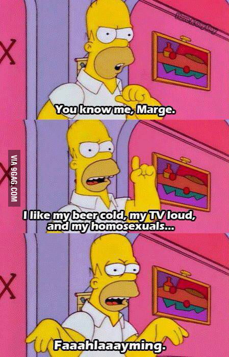 Homer on homosexuality
