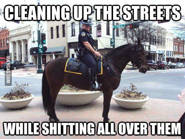 Horse Cops