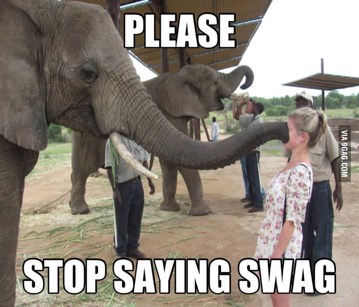 Please stop saying swag.