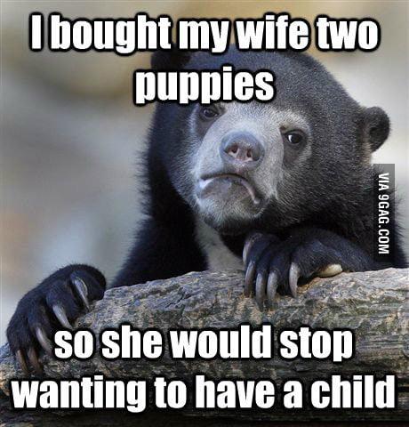 I confessed my evil plan.