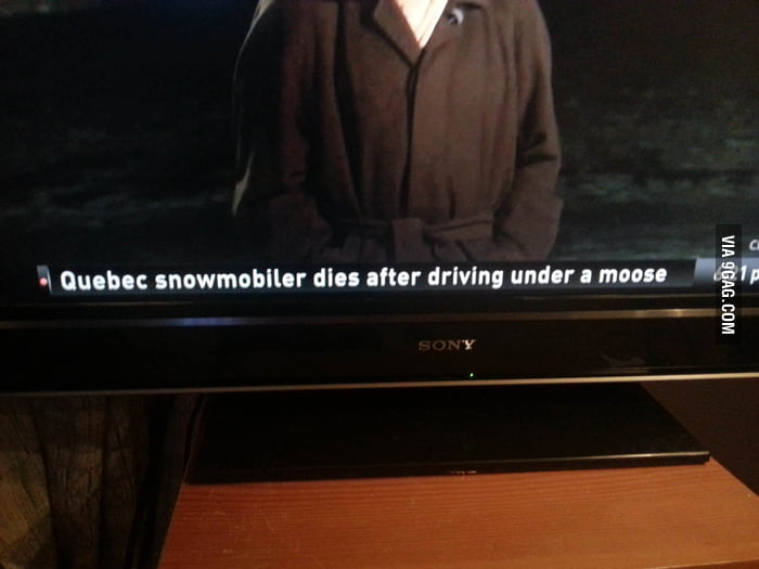 The most Canadian headline ever.