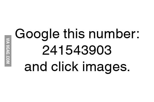 241543903 9gag