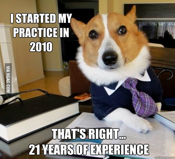 Lawyer Dog. Now 21 years of experience