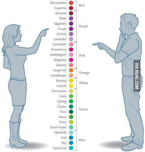 The difference beetween how man and women see colors