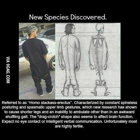 New species.. what the fvck