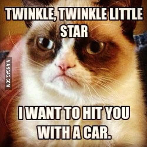 Grumpy Cat has the rhyme !!