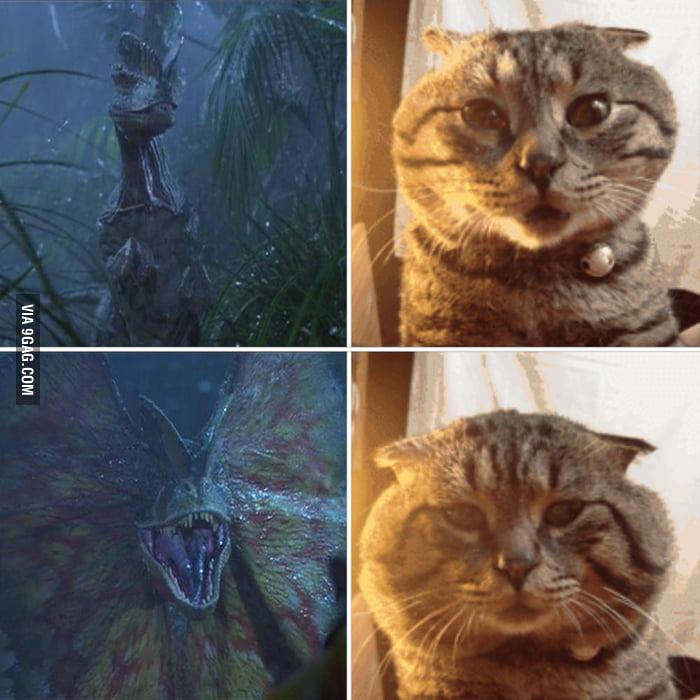 He got inspired by Jurassic Park