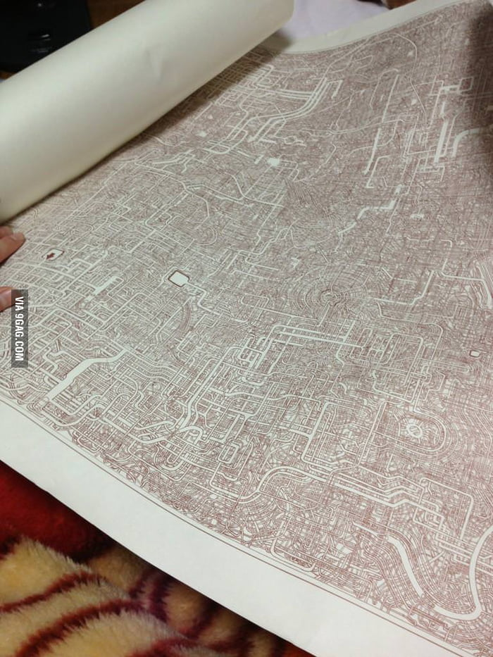 This maze took seven years to draw.