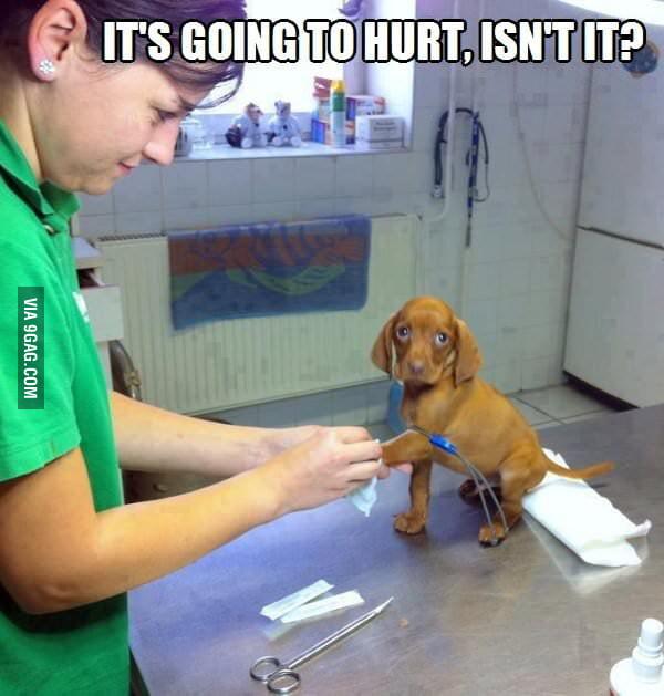 No, it won't hurt...