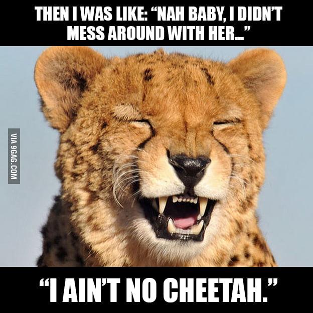 That cheetah guy...
