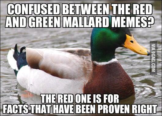 Re: Advice mallard, paradox edition