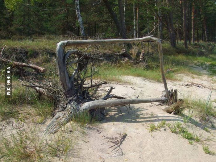 Square root, here it is.